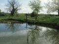 New Pond 1994