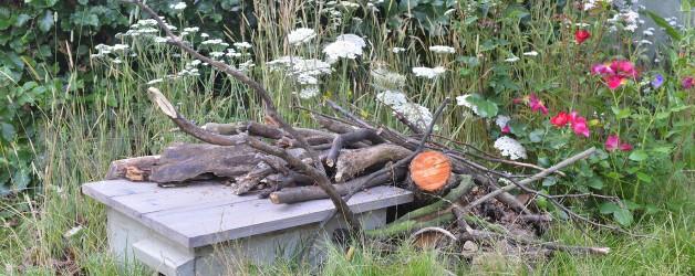RHS Offer for Garden Design Course